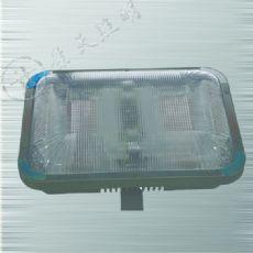 GC105防水防尘灯/双管节能灯