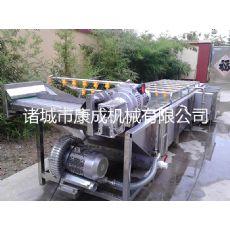 百合清洗机气泡红枣清洗机大型百合清洗生产线生产厂家
