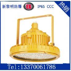 BLED9111系列防爆免维护LED照明灯