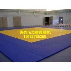 比赛训练柔道垫子价格柔道垫子厂海兴县活力体育器材厂、柔道垫子