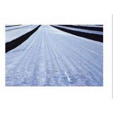 工程地膜价格 哪里能买到质量超群的工程地膜