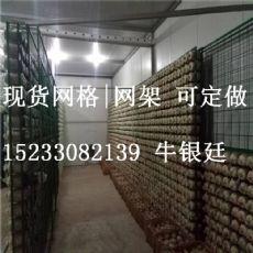 食用菌网格|供应衡水畅销蘑菇网格