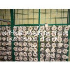 衡水地区专业生产实用的杏鲍菇网片:金针菇网架