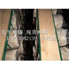 猴头菇网格:优质杏鲍菇网片是由焕滕提供