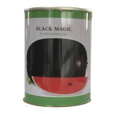供应黑皮西瓜种子罐 庞氏black magic西瓜铁罐专业定制