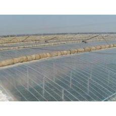 山东优质EVA农膜供应商|EVA农膜批发