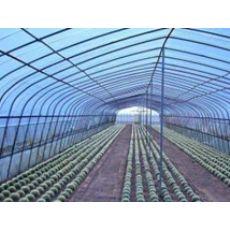淄博品质好的EVA农膜哪里有供应——EVA农用膜价格