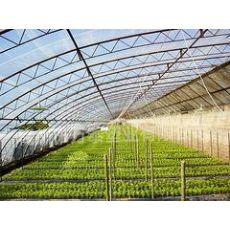 山东地区好用的EVA农膜_批发五层共挤EVA农膜