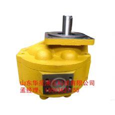 供应山东质量优良的齿轮马达:CMG齿轮马达厂家