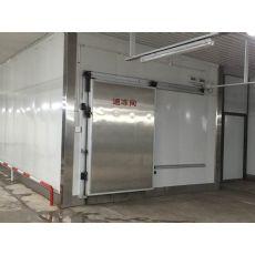 价格公道的速冻机在哪买 潍坊速冻机