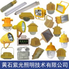 GB8051橋梁用LED防塵防爆燈紫光照明GB8051