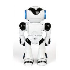 智能玩具开发/梦想天使sell/智能益智玩具