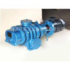 上海新型的罗茨真空泵出售,ZJ型真空泵价位