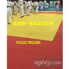 比赛训练专用柔道垫子价格、柔道垫、活力体育器材厂(查看)