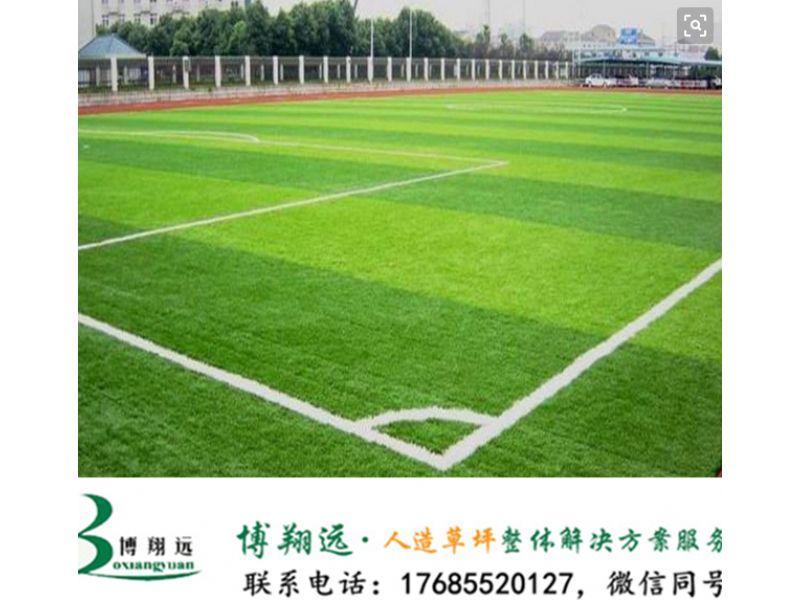 建足球场人造草成本(案例分享:济南、新疆)