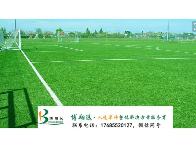 标准人造草皮足球场尺寸(案例分享:咸宁、大同)