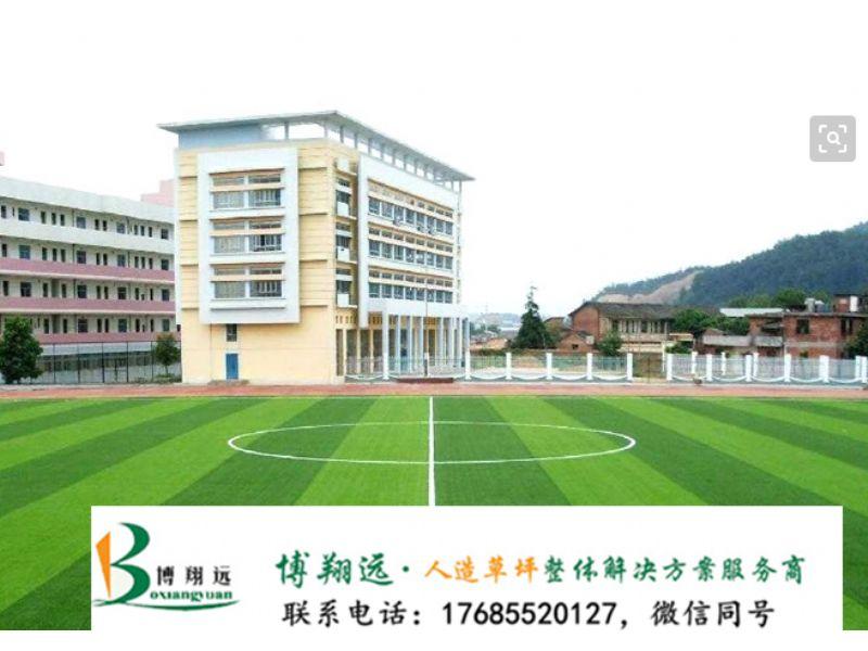室足球场人造草坪批发(案例分享:梅州、双鸭山)