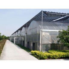 信誉好的智能温室大棚厂商-河北智能温室承建