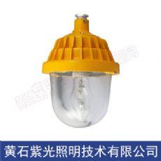 GB8152防爆平台灯