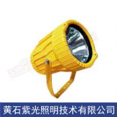 GB8153防爆投光燈,GB8035LED防爆燈