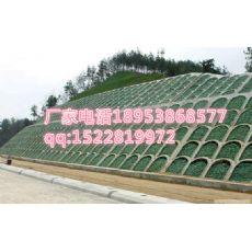 欢迎光临永州三维植被网++股份有限公司=欢迎您
