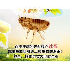 上海杀虫子公司 上海消杀费用 上海卧室杀虫