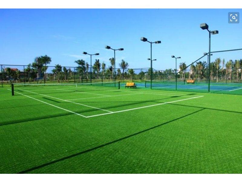 足球场草坪工程多少钱一平