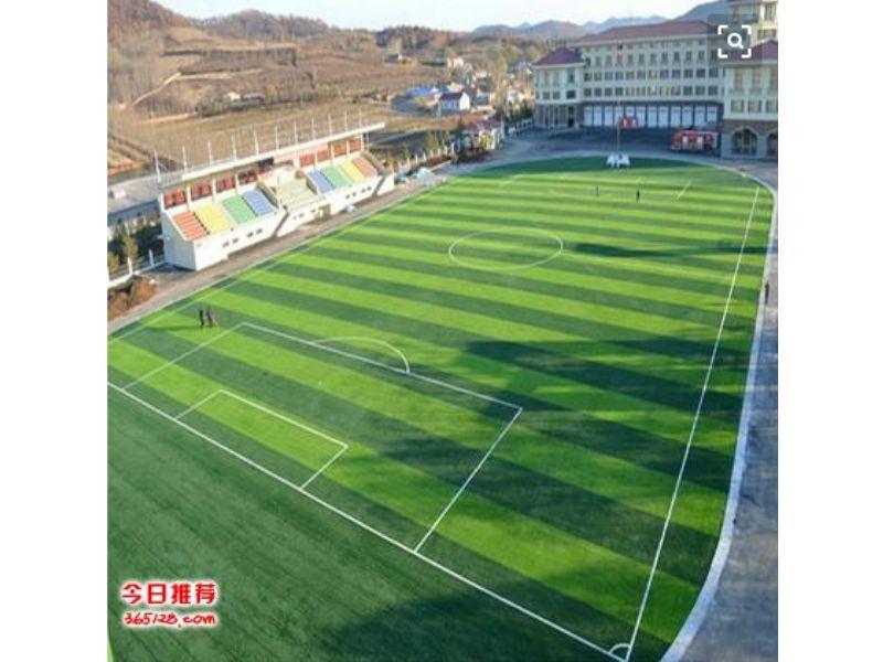 足球场人工草坪图集