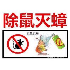 上海蟑螂害的防治
