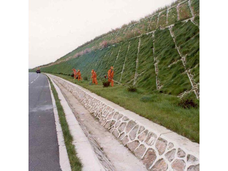 州植�y.+yl_四川凉山州生态恢复植草喷浆机多少钱