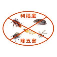 上海食品厂驱白蚁