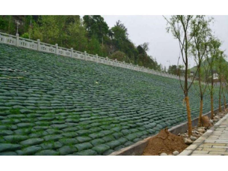 泸州绿色护坡袋厂家地址欢迎您来电定做采购