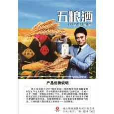 浙江烧酒设备烧酒技术首选挂牌企业明星樊少皇代言的唐三镜品牌