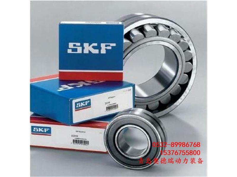 6013轴承SKF