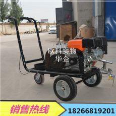 手推式道路交通標線機 斑馬線畫線機 汽油馬路噴漆機
