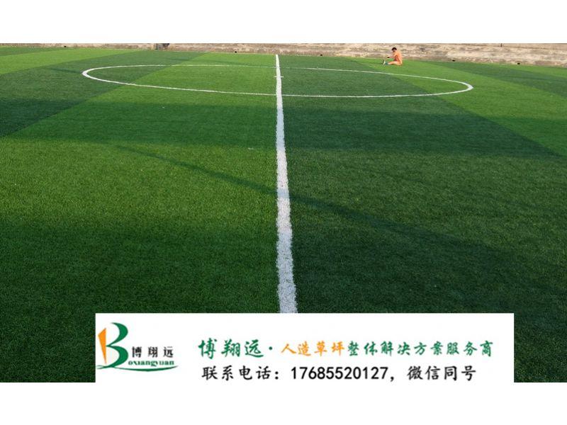 襄阳老河口足球场人工草坪的维护人造草皮_图片
