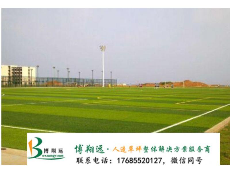 银川贺兰县人工草坪足球场的线用什么画的仿真草皮_生产厂家