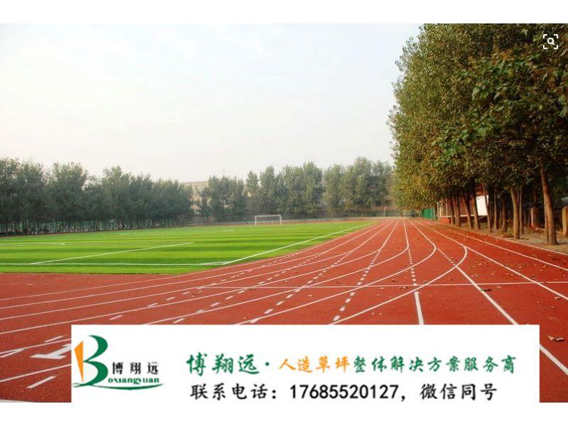 山南洛扎县人工草皮足球场厂家人造草|质量保障