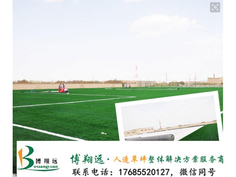白城洮南人造草足球场预算人工草坪_高新技术企业