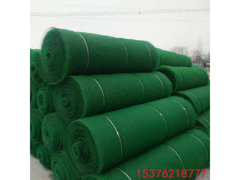 牡丹江哪里卖三维植被网垫_经销商欢迎您