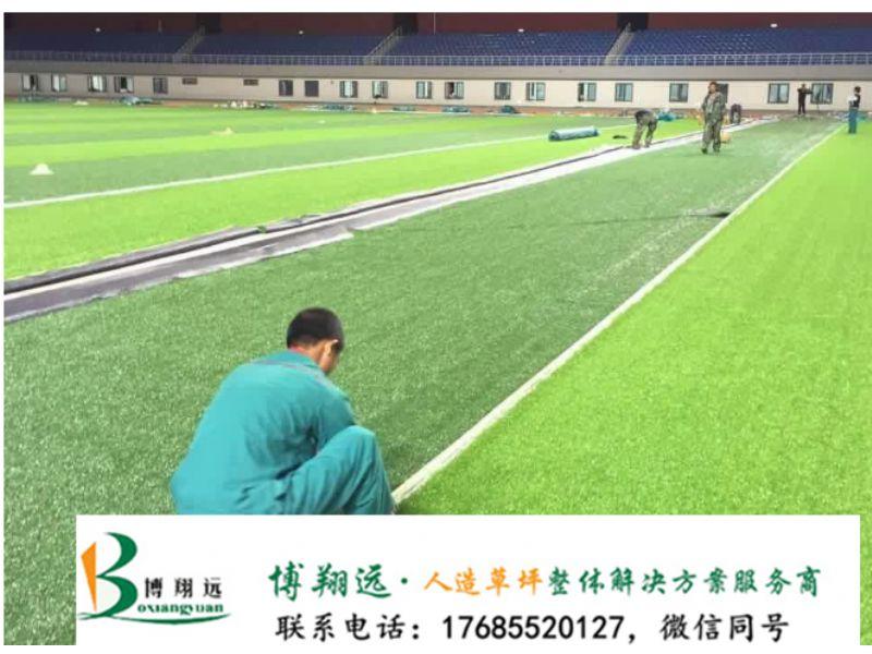 锡林郭勒苏尼特右旗足球场人造草皮是什么草草