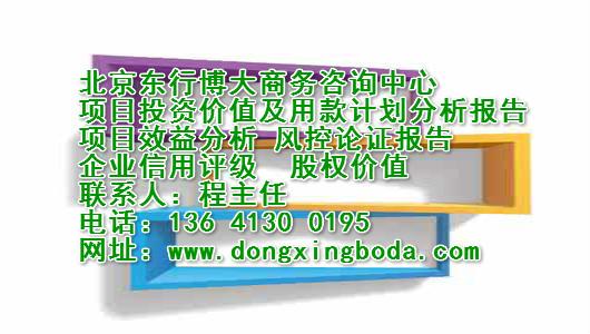 项目潜在价值及未收益报告东行博大项目风险评估