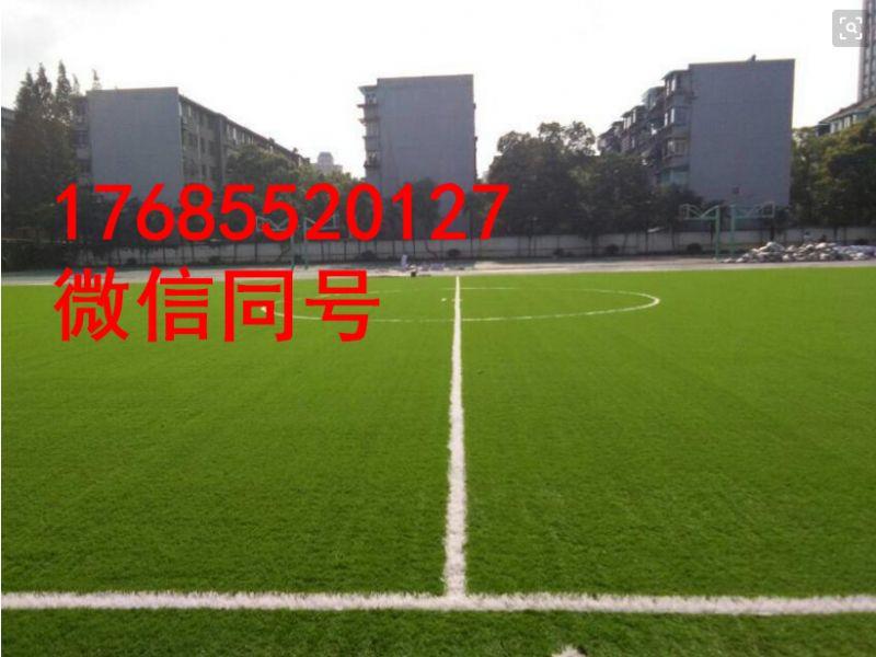 随州曾都11人制足球场塑料草坪_安装方案
