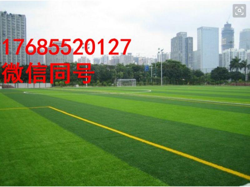 亳州利辛县笼式足球场人造草|专业环保