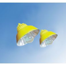 BLC8600-N250|BLC8600-J250防爆道路灯
