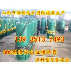 BQW200-45-45防爆型潜水式排污泵河南信阳免费调试