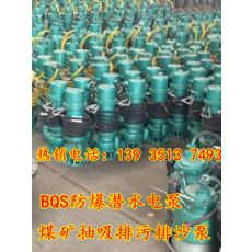 BQS30-12-3/N矿用潜水式大流量排污泵陕西延安订购