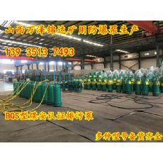 BQW40-240/6-45污水厂专用电动排污泵奇台县