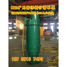 BQS150-200/2-160/N30KW排污泵电泵安徽安庆市