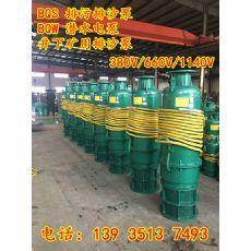 BQW63-20×4-22/S矿用大功率排沙泵汾阳值得信赖